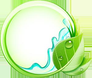 Loudoun cleaning service logo