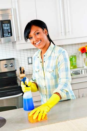 best maid service Purcellville